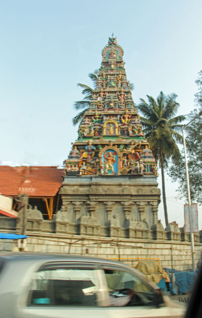 2015_01_India_08_road to Mysore_009
