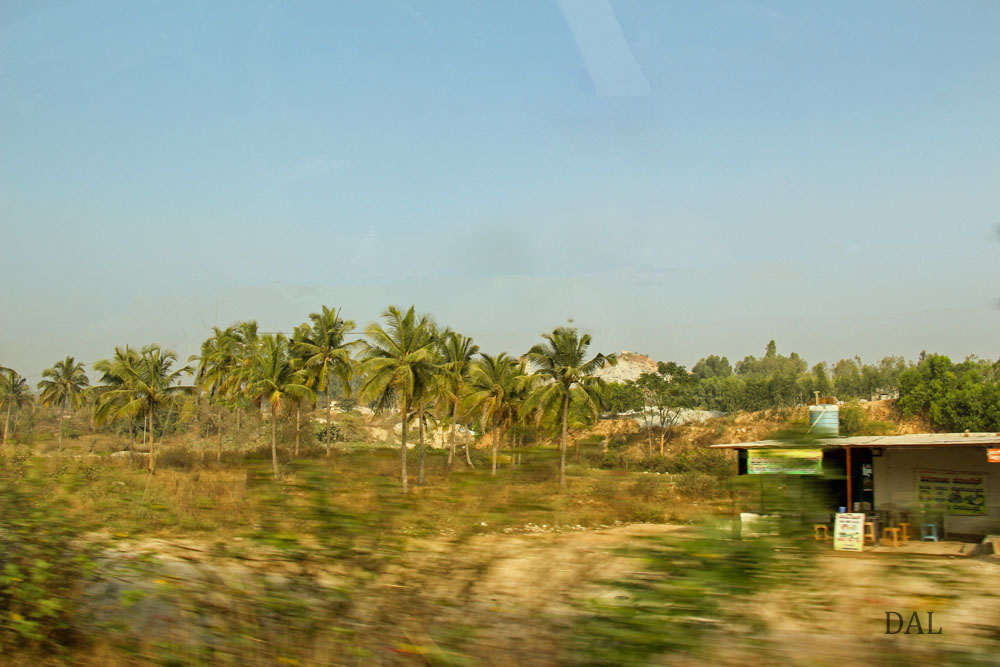 2015_01_India_08_road to Mysore_018
