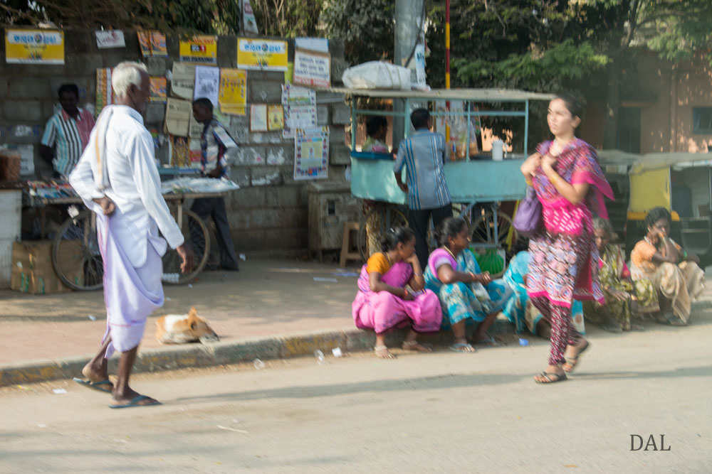 2015_01_India_08_road to Mysore_020