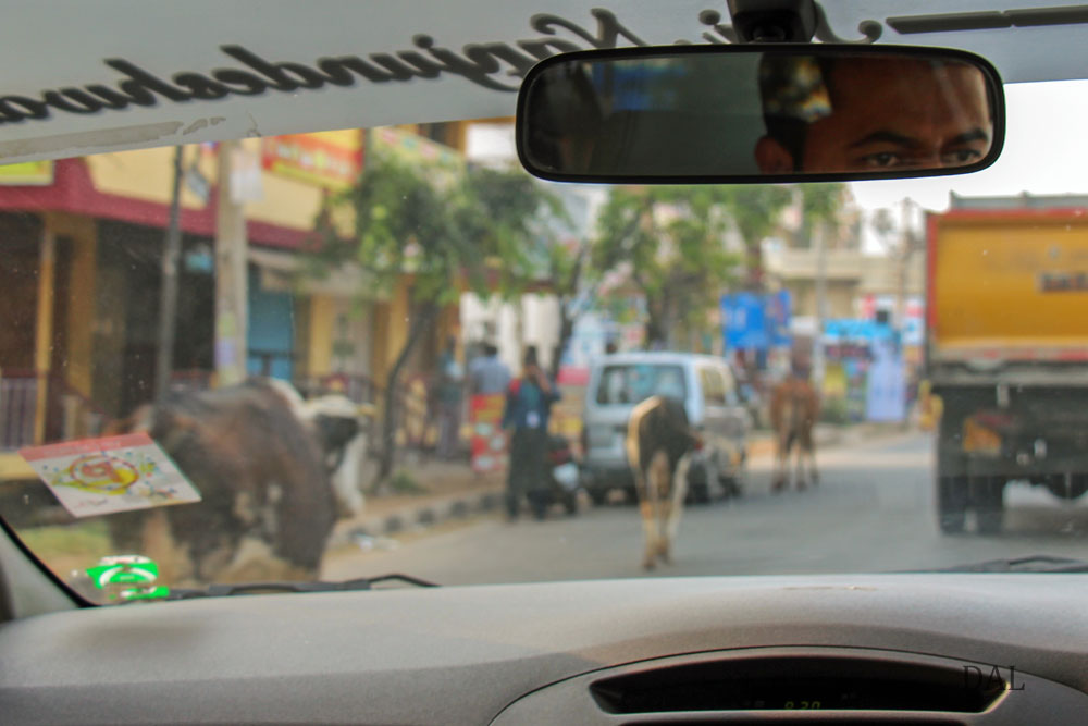 2015_01_India_08_road to Mysore_025
