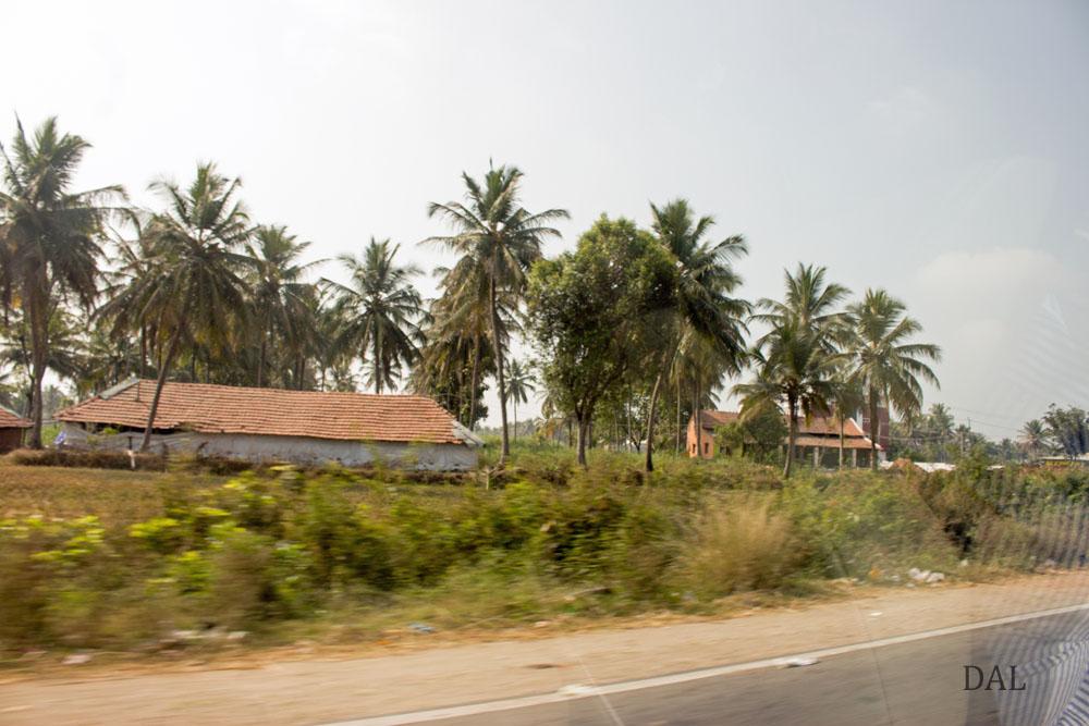 2015_01_India_08_road to Mysore_031