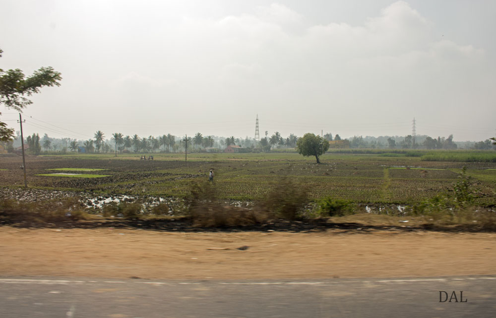 2015_01_India_08_road to Mysore_036