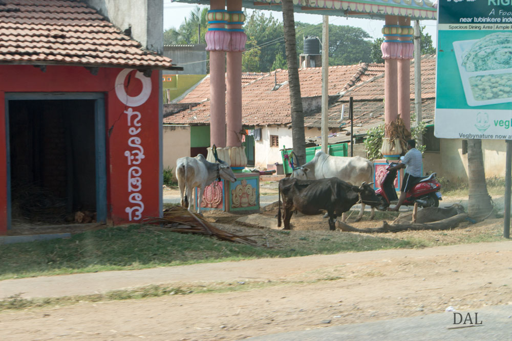 2015_01_India_08_road to Mysore_040