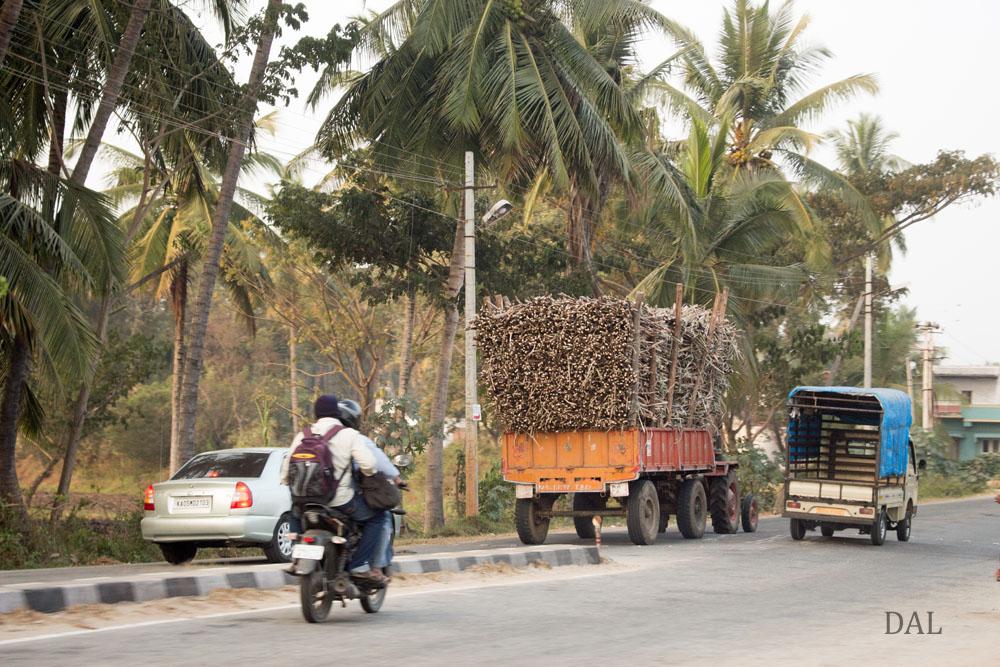 2015_01_India_08_road to Mysore_044