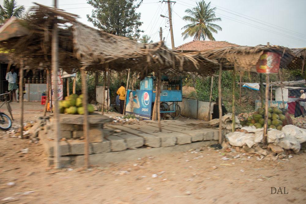 2015_01_India_08_road to Mysore_047