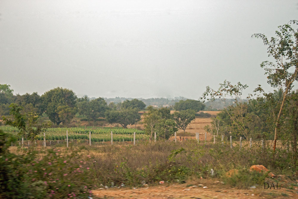 2015_01_India_08_road to Mysore_049