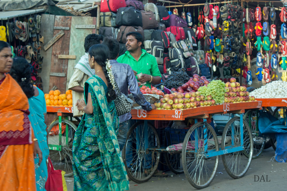 2015_01_India_09_3_city__048