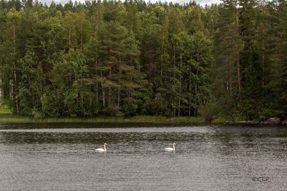 Финляндия_2015_02_Финляндия_веб_065